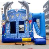 FU-CB24 Dolphin Inflatable Combo