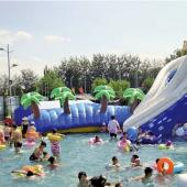 FU-WS28 Fish Water Inflatable Slide
