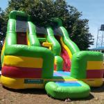 FU-GS66 Green Inflatable Grass Slide